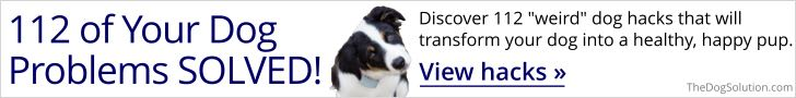 The Dog vets and training Solution