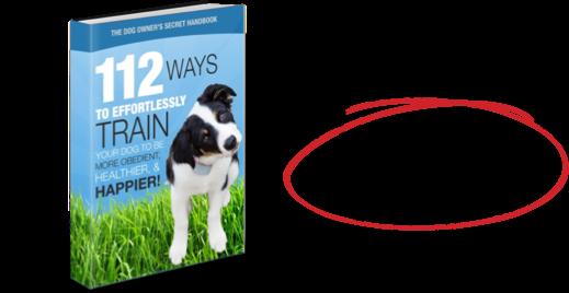 112 Amazing Dog Hacks Secret Handbook